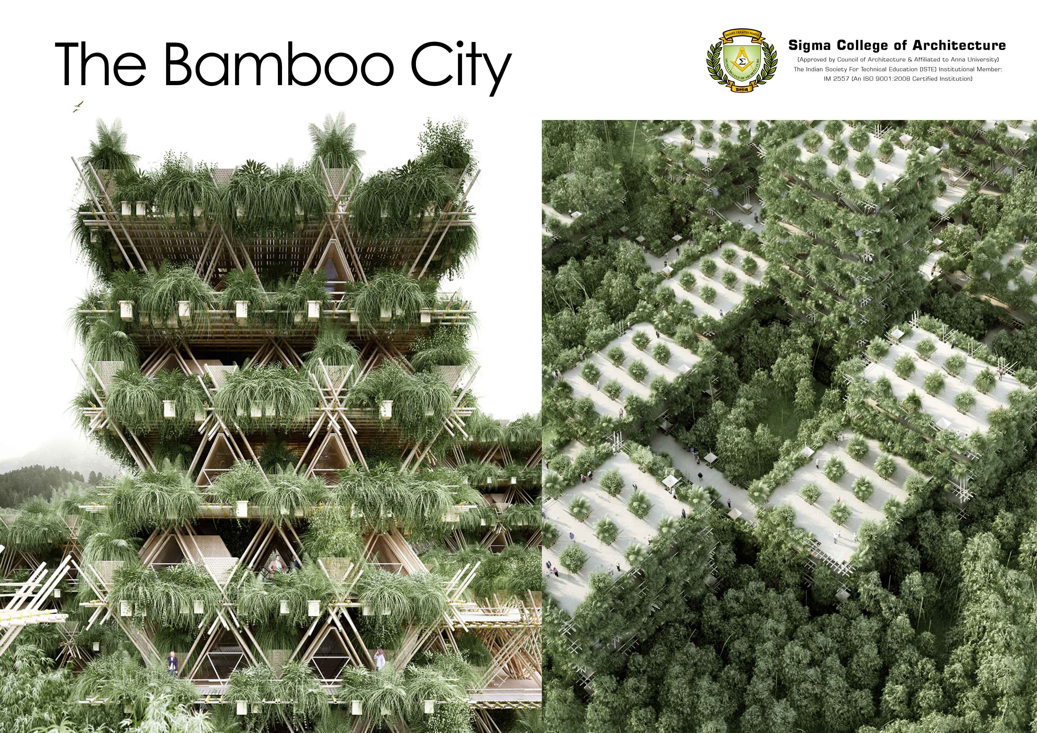 The Bamboo City